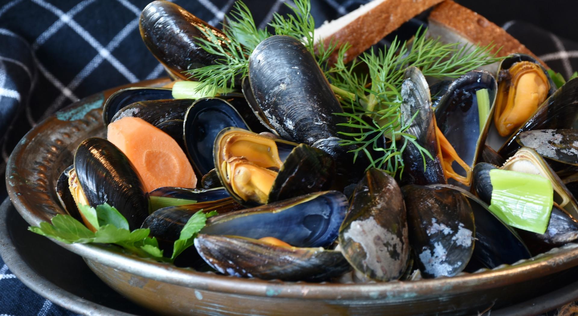 hotel-europa-restaurant-soiree-fruits-de-mer-quiberon-diaporama-moules